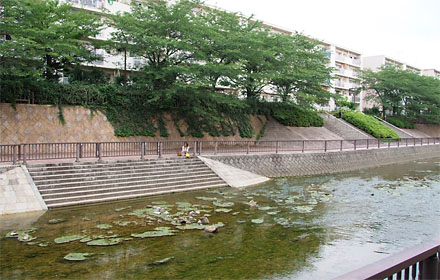 D0709shakujiigawa04